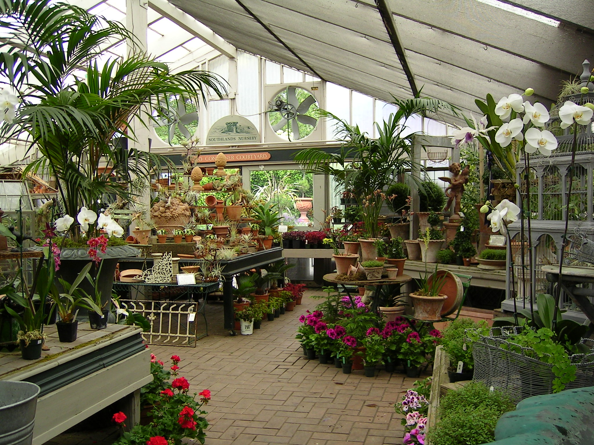 Southlands Nursery, Vancouver | HORTUS 2: There is life after retail