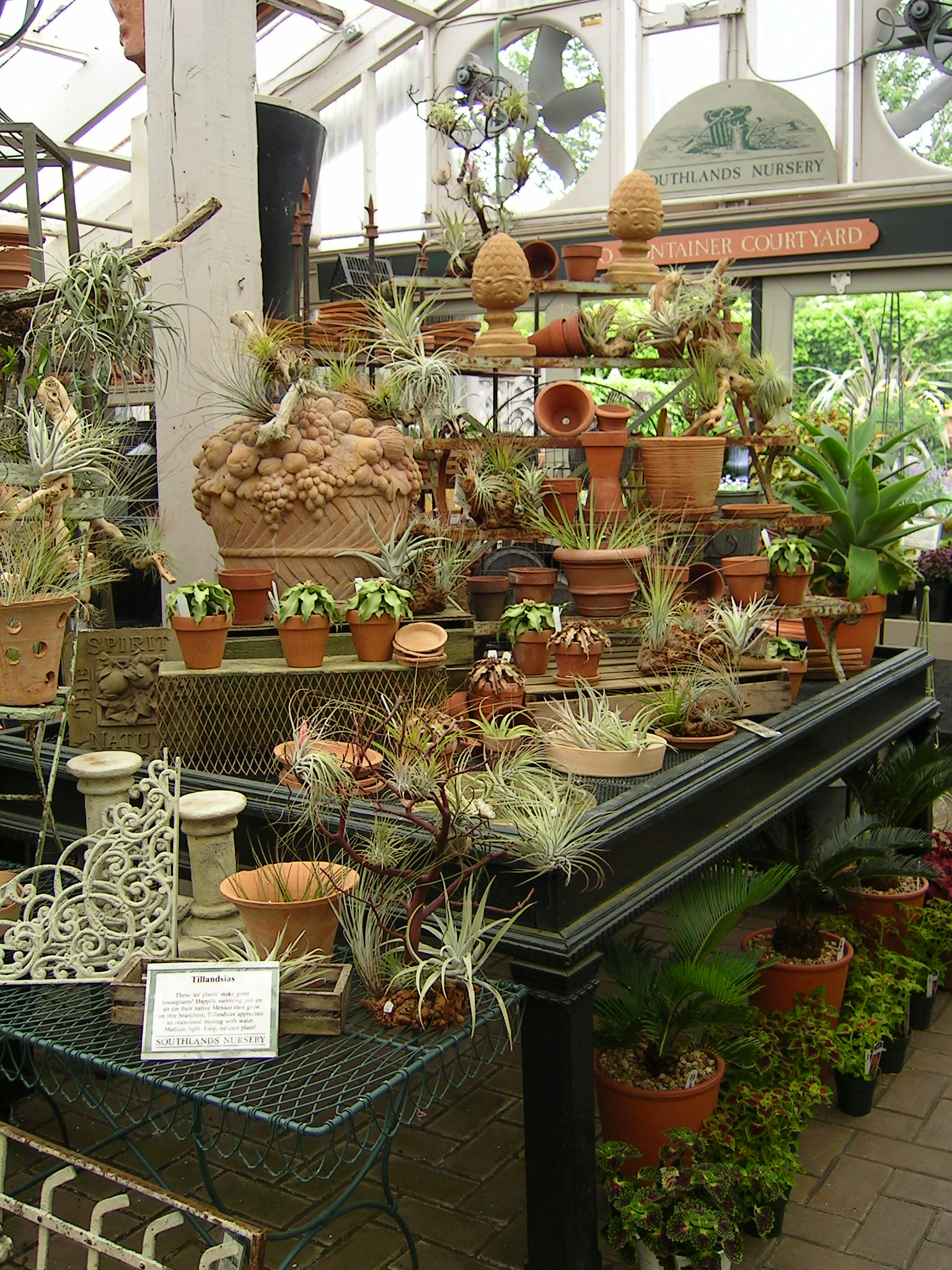 Southlands nursery vancouver hortus 2 there is life for Garden display ideas