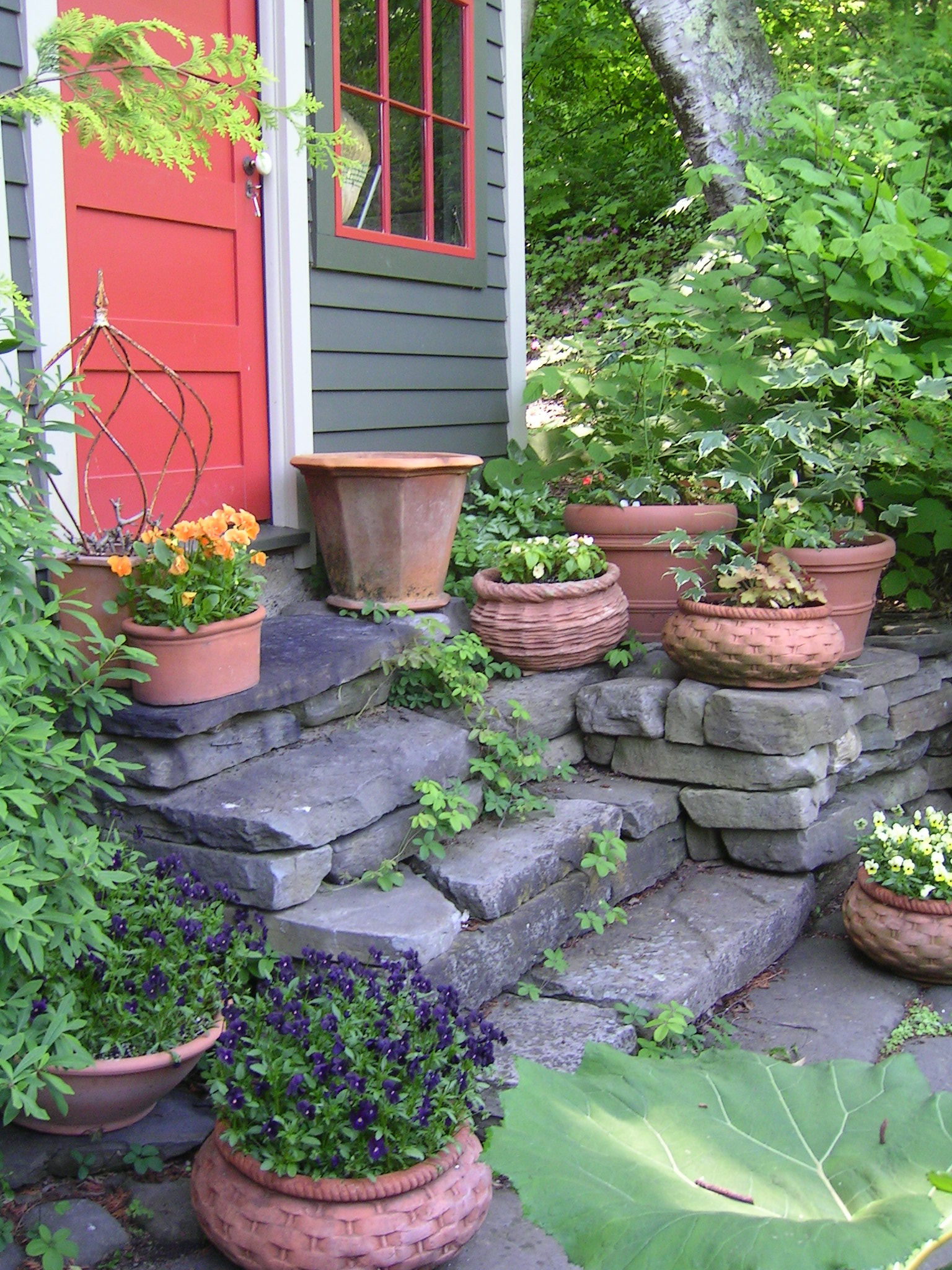 Margaret roachs upstate new york garden hortus 2 there is life you workwithnaturefo