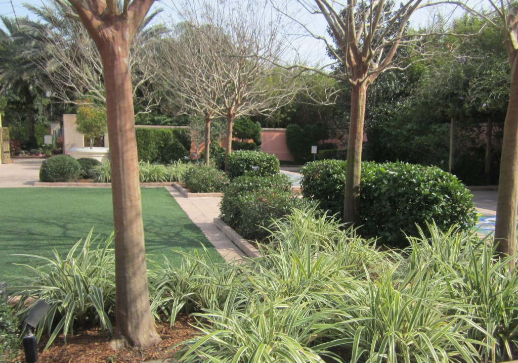 Florida Botanical Garden St Petersburg Hortus 2 There Is Life After Retail